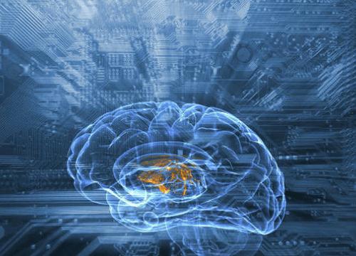 AI-Inner-Image2