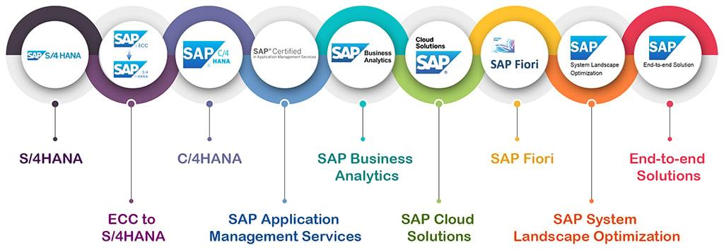 SAP-infographic